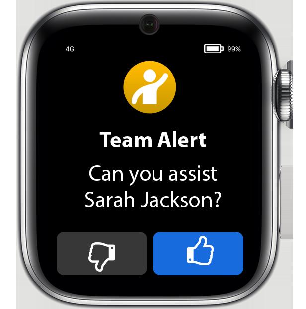 Team Alerts.